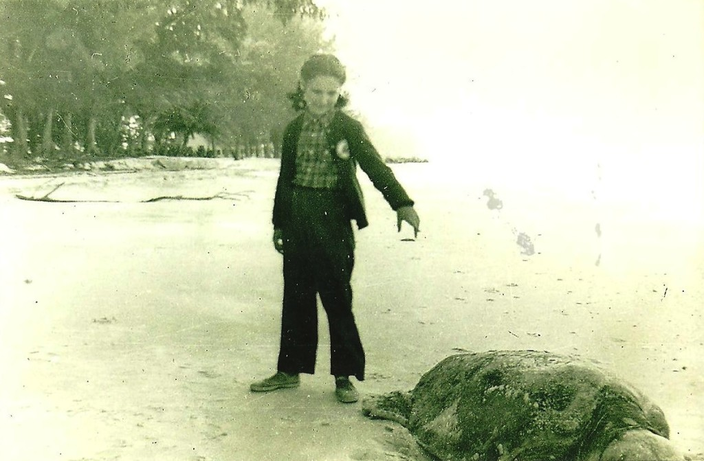 vintage-photo-of-sea-turtle-anna-maria-island
