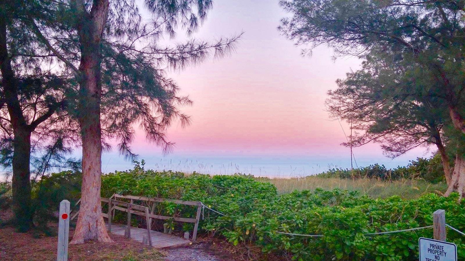 Morning by Sandra Bamboo Apartments Anna Maria Island, Florida