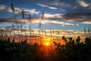 Florida sunset at bamboo apartments