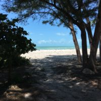 beach-after-irma-emerald-water