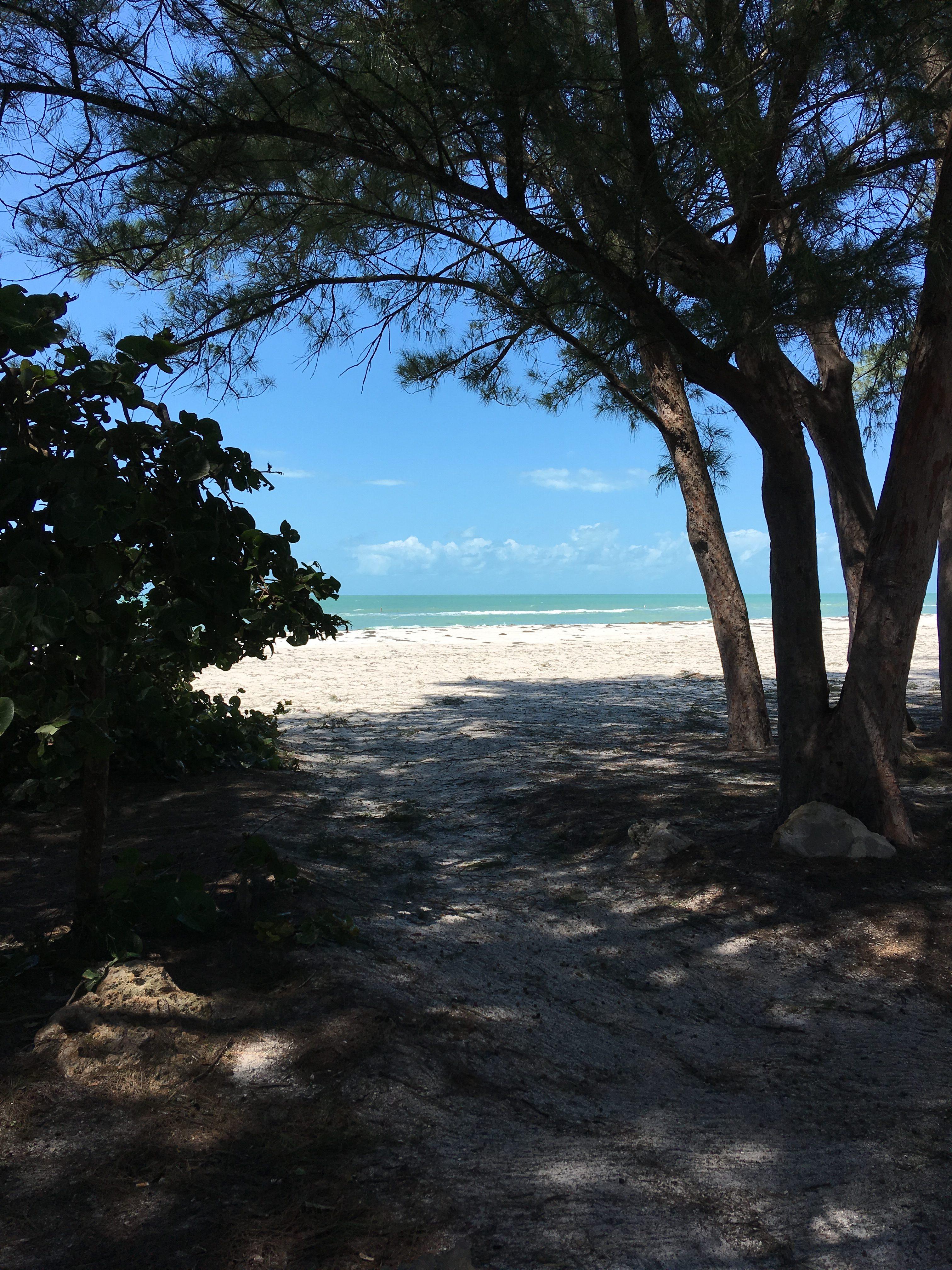 beach-after-irma-emerald-water-jpg