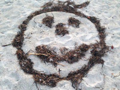 seaweed smiley